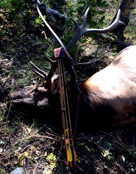 Good Schmeisser Archery Hunting by Paul Hayes!