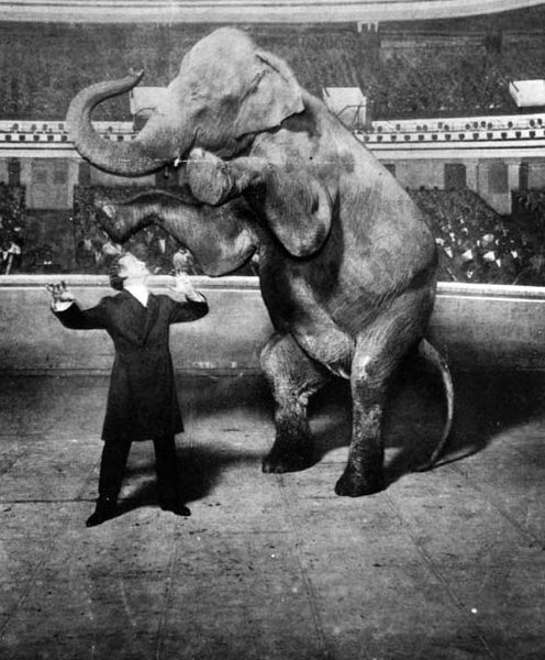 Harry Houdini (1874-1926) vanishing Jennie, the elephant, performing at the Hippodrome, New York.Others might vanish rabbits, but in 1918, on the brightly-lit stage of the Hippodrome in New York City, Houdini made a 10,000-pound elephant disappear. He created a sensation. When Houdini fired a pistol Jennie vanished from view.Deutsch: Houdini lässt einen Elefanten verschwinden (1918)Datum 1918 Item in McManus-Young Collection, LC-USZ62-112421 DLC Urheber White Studio